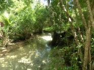 Juniper River