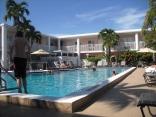 Best Westerm Hibiscus Key West