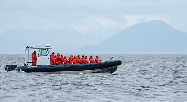 whale-watching-boat